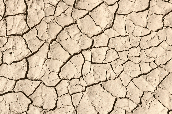 how to help california drought